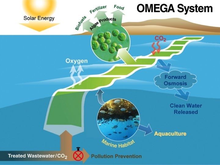 637960main_omega_systembenefits_diagram_full