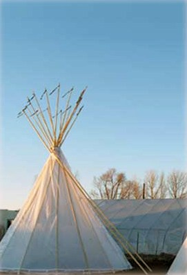 tipi-greenhouse_photo_by_reese_tipis