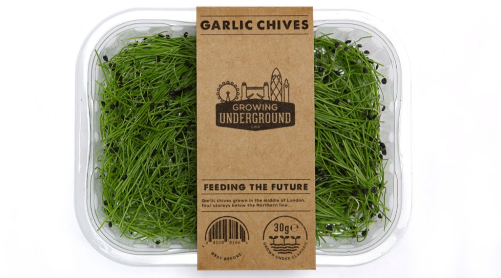 garlic-chives-box-growing-underground.jpg