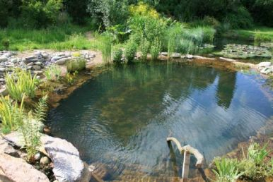 natural swimming pool 2