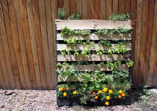 pallet tray herb garden