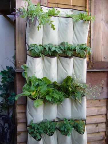 pouch-garden