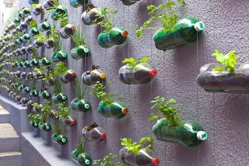 Rosenbaum-Recycled-Vertical-Garden1