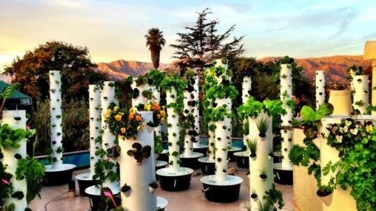 tower-gardens-670x377